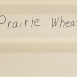 Vinyl-Prairie Wheat